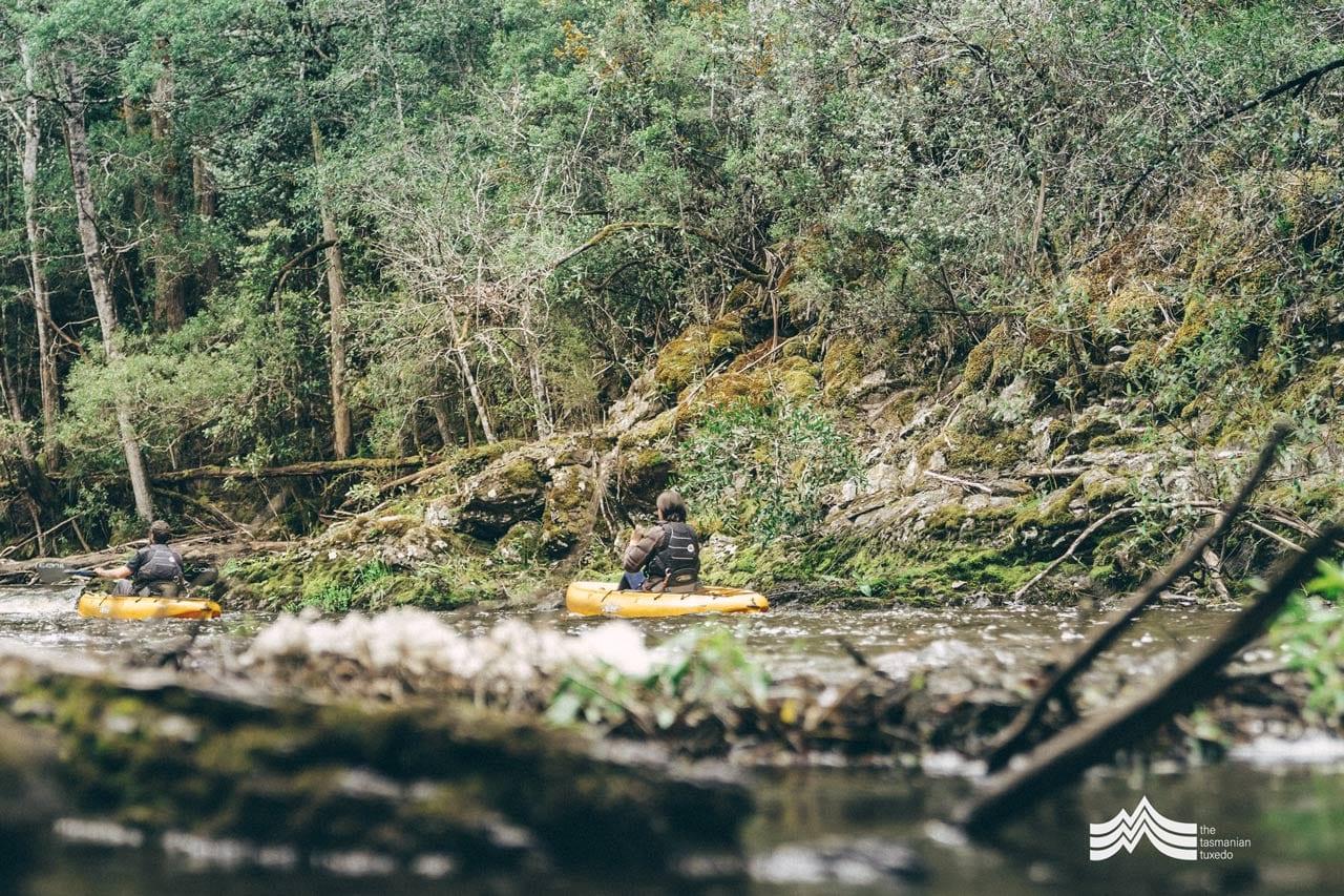 Kayaking in the Derwent Valley Tasmania