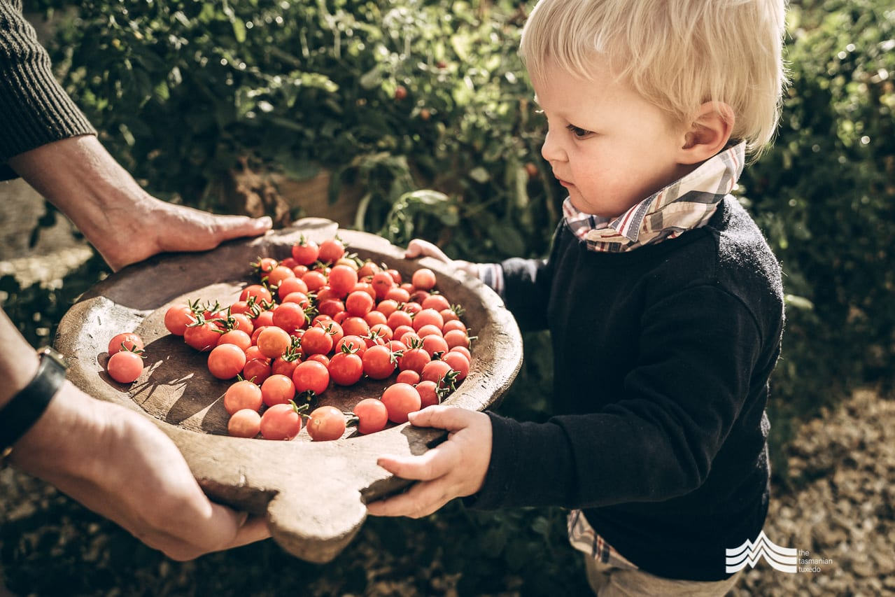 child with a large plate of tomatoes