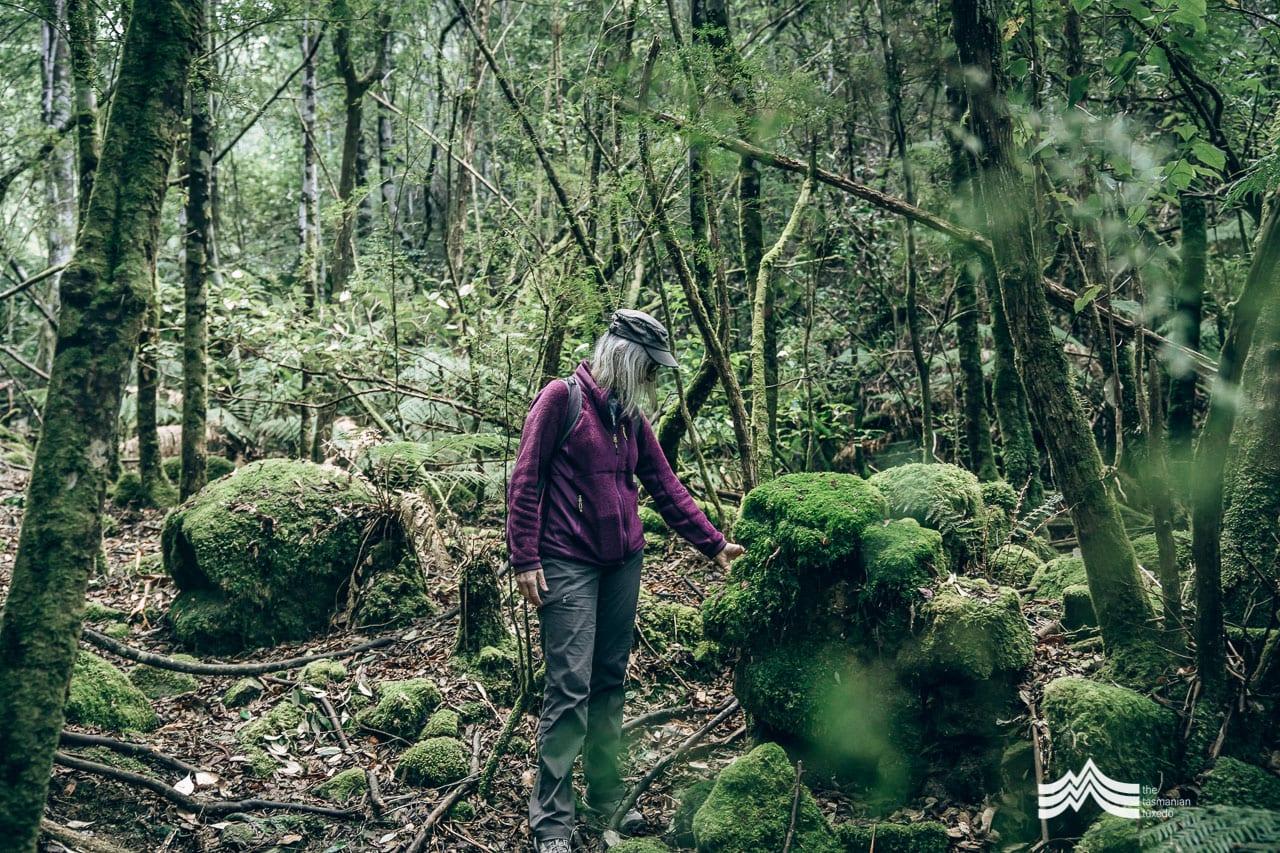 maria grist exploring the mount wellington